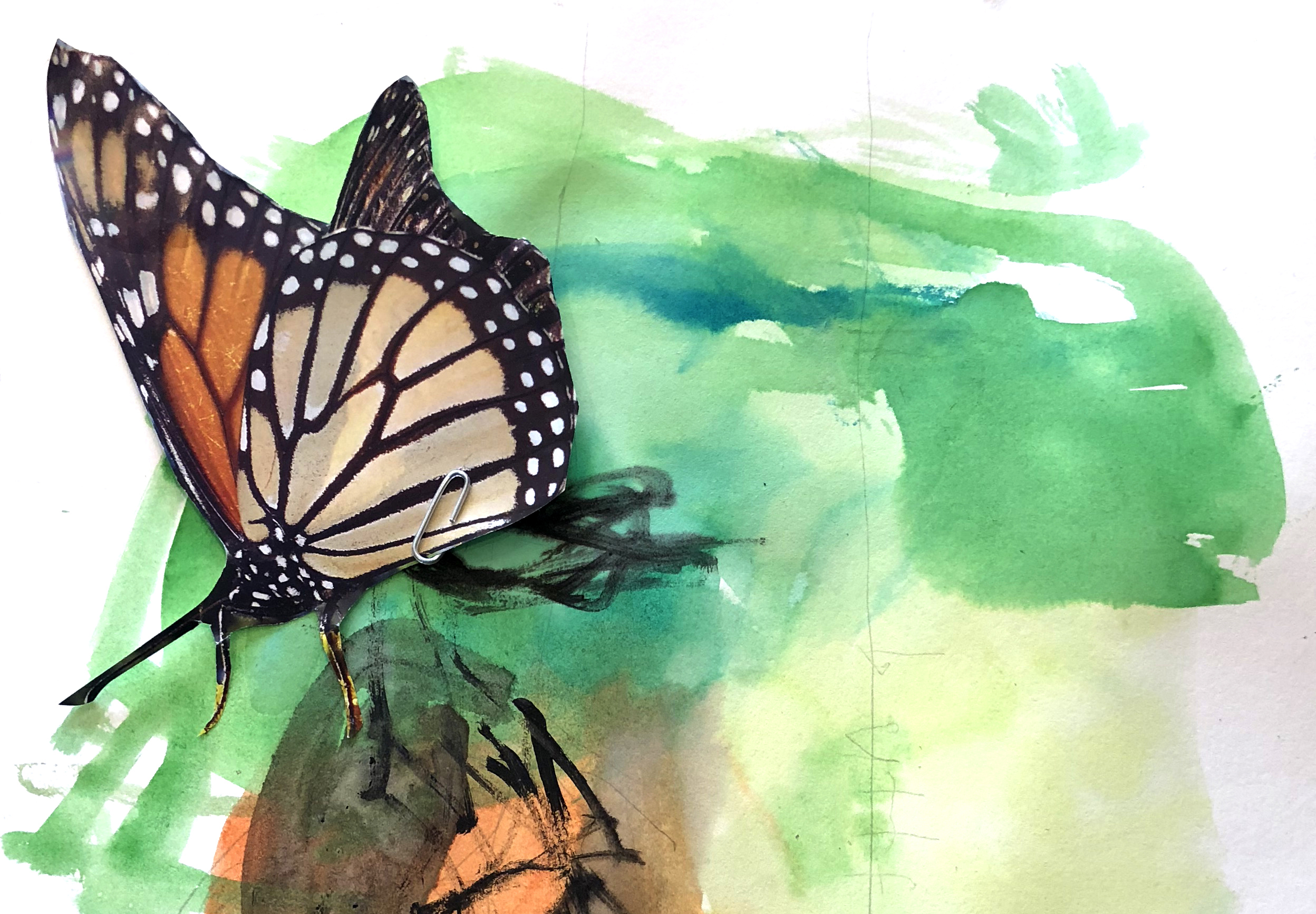 Butterfly%20painting%20 %20cropped